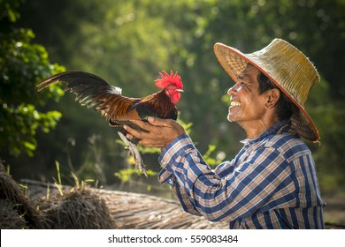 A happy Thai farmer and his roost.