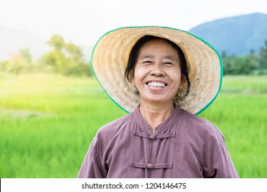 happy Thai female farmer smiling over green rice farm with landscape of mountain in background