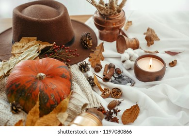 Happy Thanksgiving concept. Beautiful pumpkin, candle light, fall leaves, hat, berries, nuts, acorns, cotton, cones, cinnamon on soft white background. Seasons greetings. Cozy autumn