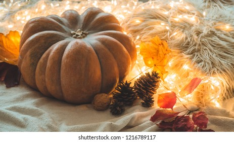 Happy Thanksgiving Day background, In home decorated Pumpkin, cones, nuts and autumn leaves garland. Beautiful Holiday Autumn festival concept scene Fall, Harvest