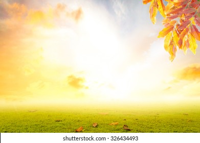 Happy thanksgiving day concept: Blurred beautiful autumn background.
