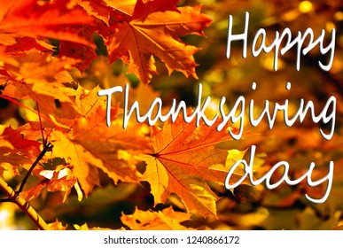 Happy Thanksgiving Greeting, autumn background of colorfull  leaves