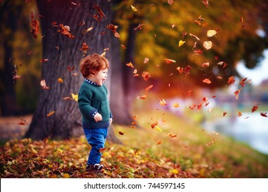 happy toddler baby boy having fun, playing with fallen leaves in autumn park