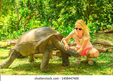 Happy tourist woman touches curiously Aldabra Giant Tortoise, species Aldabrachelys gigantea which stretches wrinkled neck. Curieuse, Nature Reserve, Seychelles, Indian Ocean. Turtle Sanctuary.
