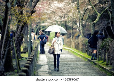 Happy travel woman look sakura cherry blossoms tree in rainy day
