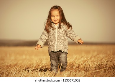 Happy two year old girl wearing knitted hoodie sweatshirt walking in summer harvested field