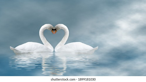 Happy Valentine's Day with two swans on a blue haze background