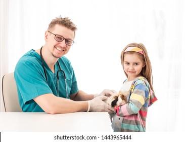 Happy vet doctor inspect girls hairy guinea pig, on white background