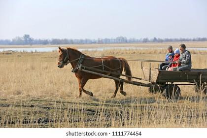 Happy village family rides through the spring field in a horse cart on horseback. Novotroitskoe Village/ Ukraine - 2015-03-22