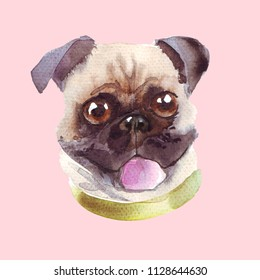 Happy watercolor puge dog puppy. Handdrawn illustration