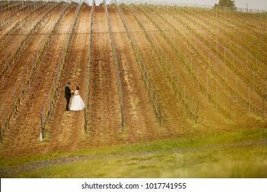 happy wedding couple posing in vineyard