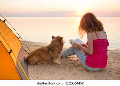 happy weekend by the sea - girl with a dog on the beach at sunset. Ukrainian landscape at the Sea of Azov, Ukraine