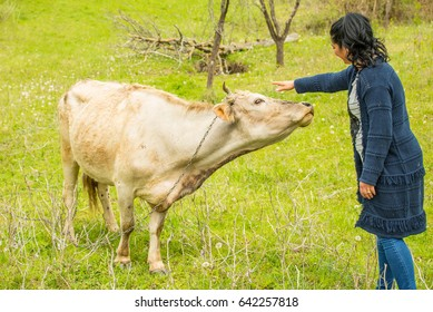 Happy woman cuddling a cow on a field