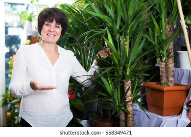 Happy woman customer choosing best yucca tree to buy in flower shop
