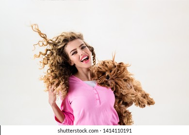 Happy woman with long curly hair holds small dog. Beautiful girl hugs little dog. Lady with puppy. Smiling attractive woman with Yorkshire terrier. Girl with dog in hands. Pet adoption, life of pets.
