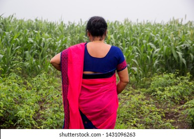 Happy woman in sorghum crop field at morning and enjoying nature.