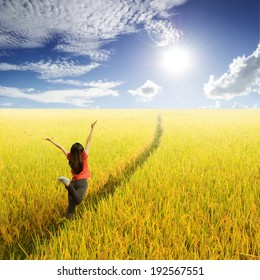 Happy woman in yellow rice field and Sun sky