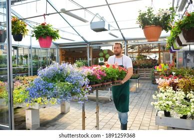 happy worker growing flowers in a greenhouse of a flower shop