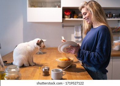 Happy young blonde girl pouring the carrot into a glass bowl to make the cake mix with her cat staring at it