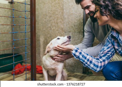 Happy young couple at dog shelter adopting a dog.