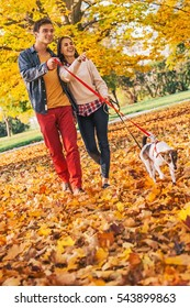 Happy young couple with two cute dogs walking in park on nice autumn day