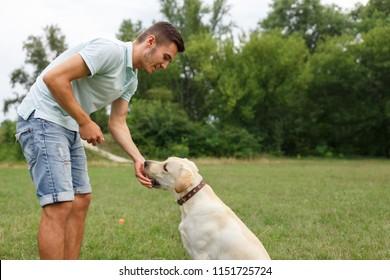 Happy young man feeding dog Labrador outdoors