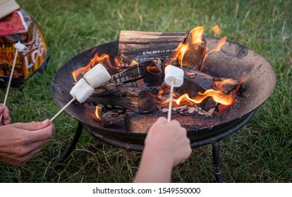 Happy young man and his son enjoying their weekend in natural environment while frying marshmellow on campfire in knockhatch england