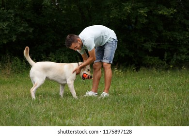 Happy young man is training a dog Labrador outdoors