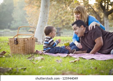 Happy Young Mixed Race Ethnic Family Having a Picnic In The Park.