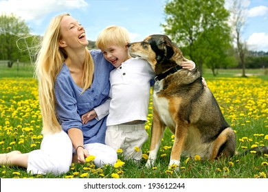 a happy, young mother and her little child are sitting outside in a Dandelion Flower meadow, laughing as the play with their pet German Shepherd Dog.