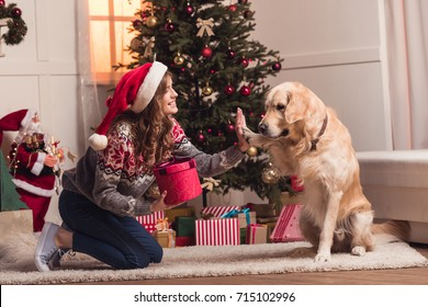 happy young woman in santa hat playing with dog at christmastime