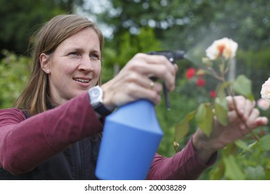 Happy young woman sprays some roses in the garden