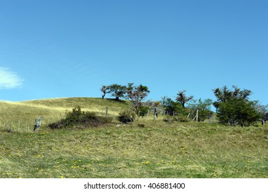 HARBERTON, ARGENTINA - NOVEMBER 16,2014:Harberton estate is the oldest farm of Tierra del Fuego and an important historical monument of the region.