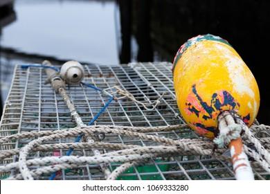 Harbor lobster buoy in trap