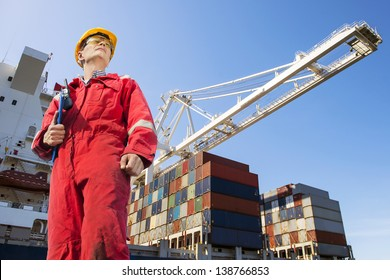 Harbor master with clipboard, overalls, hard hat and safety glasses standing in front of a large container ship being unloaded
