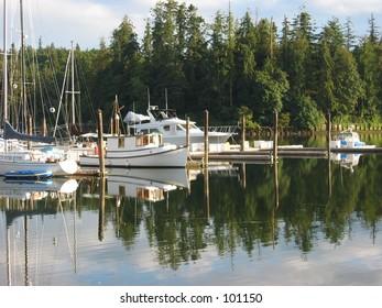Harbor Reflections