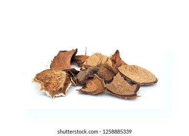 Hard shell of coconut,coconut shell white background.