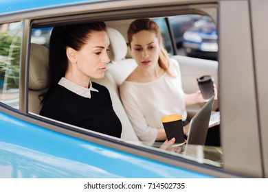 Hard working nice businesswomen working in the car