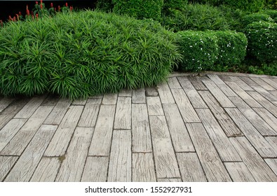 Parkettböden und Pflanzen im Garten