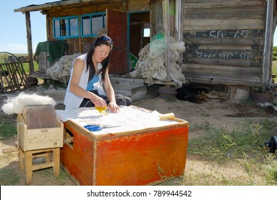 HARHORIN, MONGOLIA - AUGUST 20, 2006: Unidentified young Mongolian woman works with felt outside of a house in Harhorin, Mongolia. Felt is essential material for winter clothes in Mongolia.