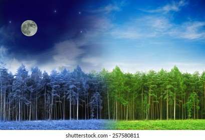Harmony between  day and night