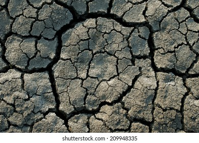 harmony in the destruction - cracking the bottom of the dried lake
