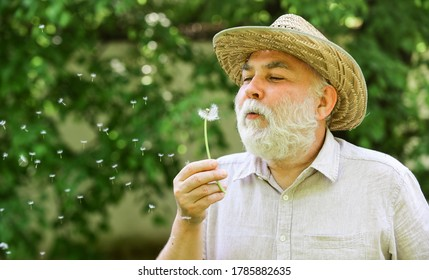 Harmony of soul. Peaceful grandpa blowing dandelion. Happy and carefree retirement. Elderly man in straw summer hat. Grandpa senior man blowing dandelion seeds in park. Mental health. Peace of mind.