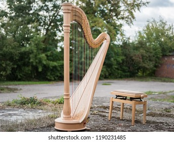Harp Music Instrument and Chair on the Ground.