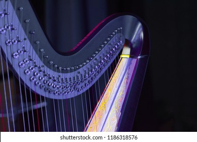 Harp music. Harp instrument closeup. Detail of musical instrument