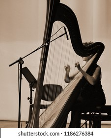 Harp player. Classical musician harpist playing harp. Female musician playing the harp.