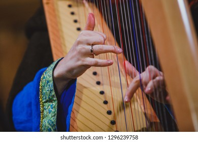 Harpist hands and harp close-up