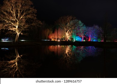 Harrogate,North Yorkshire,United Kingdom.12.27.2018.Brown,red,blue and purple floodlights illuminating trees and reflecting on a lake.