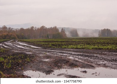The harsh landscape nature and road through the fields for the off-road SUV with puddles and mud. Autumn or spring background. Forest in the fog in the background. Fallen leaves, slush, mud.