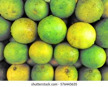 Harvest in Asia. Rangpur (IMandarin - hybrid of Mandarin and lemon) scattered evenly, bazaar. Background